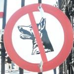 安全?危険?グリホサート系除草剤ラウンドアップが販売禁止の理由