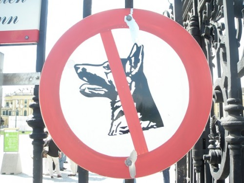 No Dog Allowed Sign