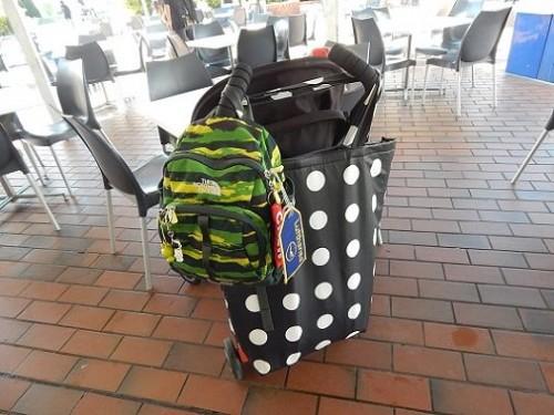 DIY Reusable Cooler Bag11
