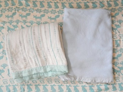 Aden and Anais Blanket5