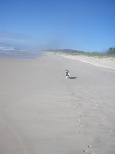 Spit Beach