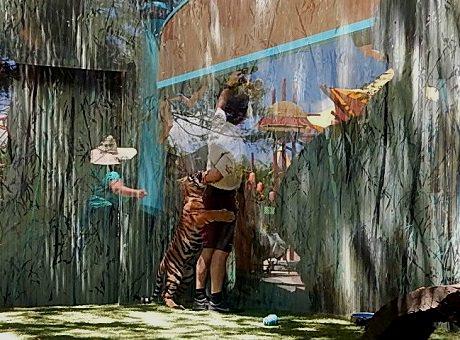 Tiger Cub at Dreamworld19