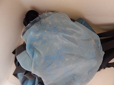 Wash And Clean A Backpack15