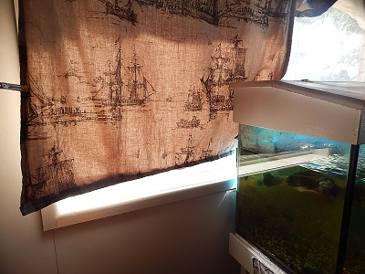 Homemade Curtains18
