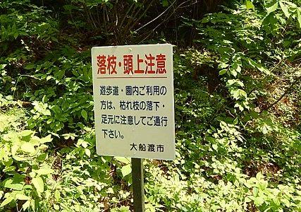iwate-ofunato-goishi-kaigan16