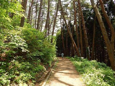 iwate-ofunato-goishi-kaigan17