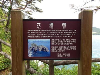 iwate-ofunato-goishi-kaigan29